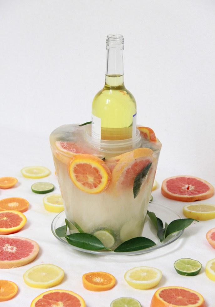 DIY citrus slice frozen ice bucket