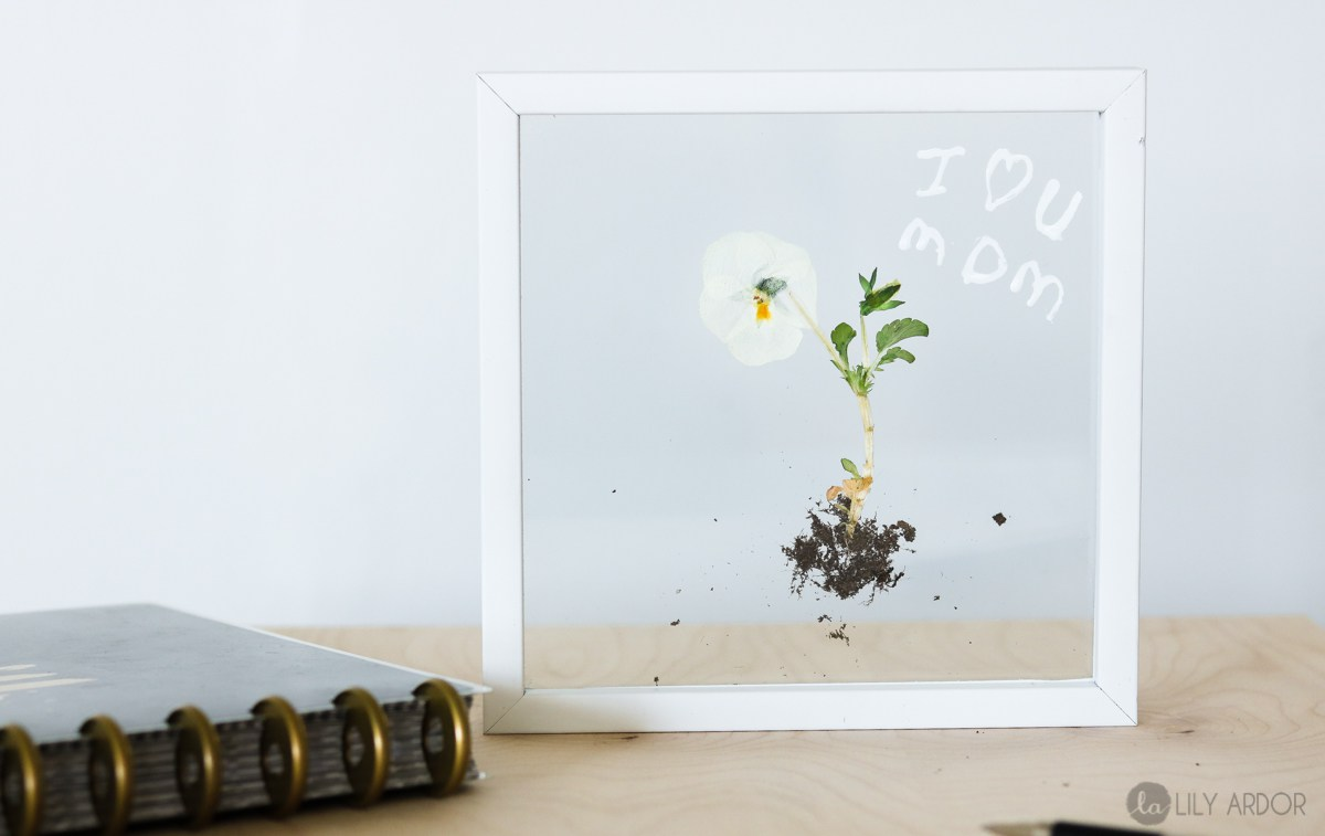DIY modern flower with roots art in a clear frame