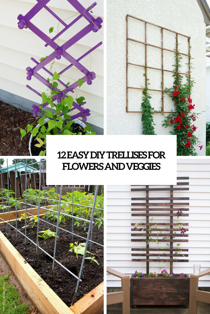12 Easy DIY Trellises For Flowers And Veggies