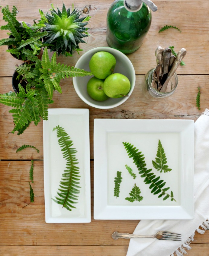 DIY pressed fern resin trays and dishes (via www.craftberrybush.com)