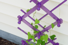 DIY trellis of a clothes rack