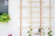 DIY modern wood garden trellis