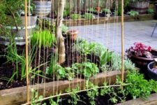 DIY bamboo and twine garden trellis