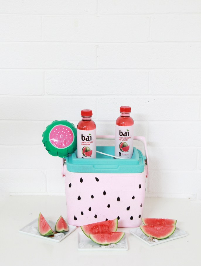 DIY pastel watermelon drink cooler (via abubblylife.com)