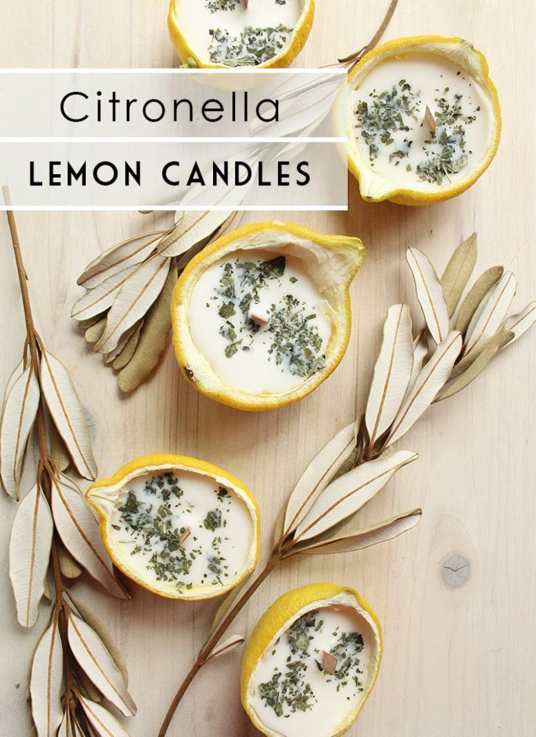DIY citronella lemon halves candles with herbs (via www.lifenreflection.com)