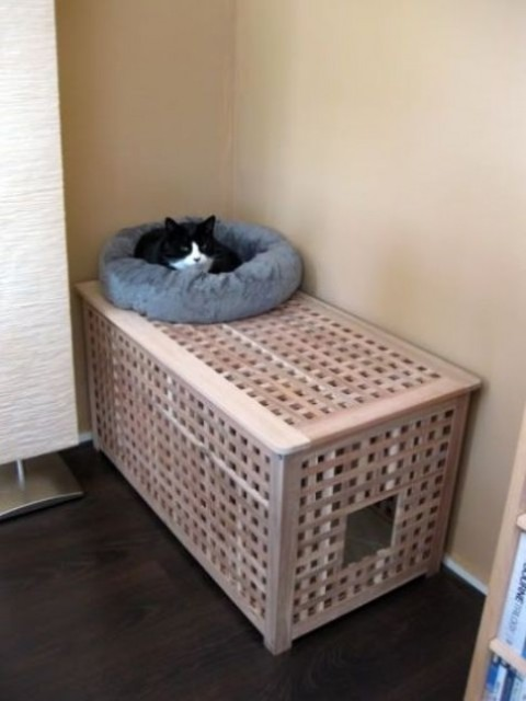a comfy Hol table with a kitty loo inside and a kitty bed on top is stylish idea