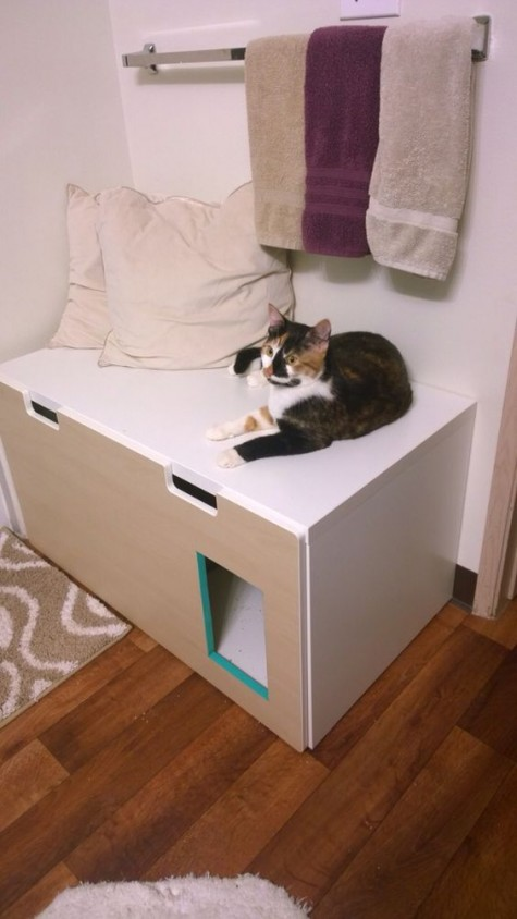 a Stuva bench in the entryway with a kitty loo inside is functional piece for a small space