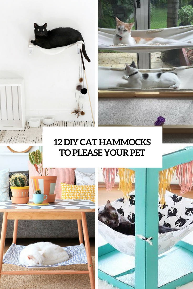 12 DIY Cat Hammocks To Please Your Pet