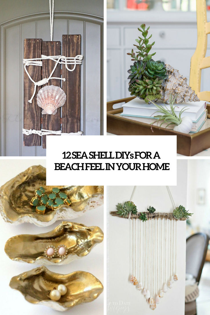 sea shell diys for a beach feel in your home cover