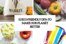 13 eco-friendly diys to make our planet better cover
