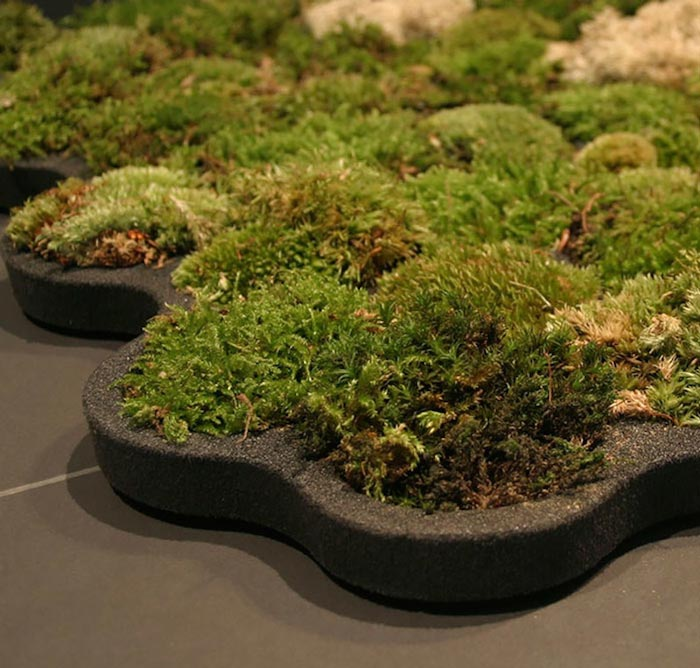 DIY real moss covered bathroom mat (via www.jebiga.com)