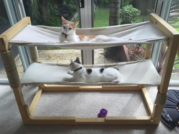 DIY cat bunk bed with two hammocks (via makezine.com)