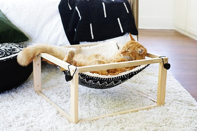 DIY free-standing kitty hammock of wood (via www.hunker.com)
