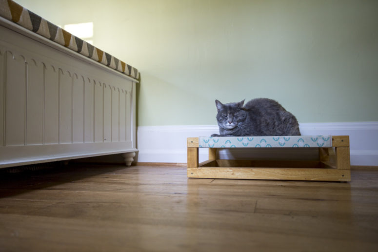 Hamaca de gato baja de bricolaje con un marco de madera (a través de diy.dunnlumber.com)