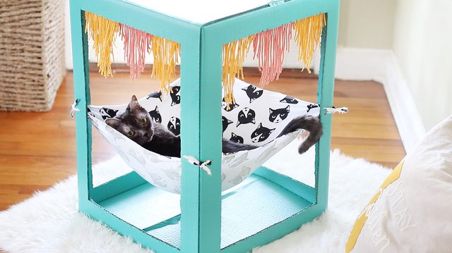 DIY bright cardboard box with a hanging hammock (via www.cuteness.com)