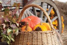 02 a basket with colorful pumpkins and pinecones is a perfect idea for indoor and outdoor decor