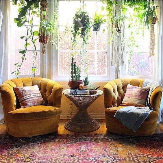 a boho sitting nook by the window with a couple of mustard velvet chairs and much greenery