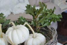 09 a basket with white pumpkins and real green oak leaves looks very natural and rustic