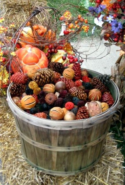 a bushel basket filled with colorful pinecones, citrus and nuts is great for outdoor decor