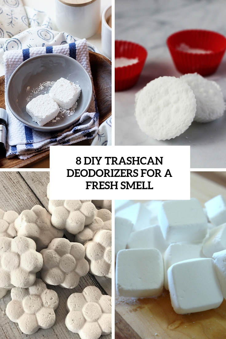 8 diy trashcan deodorizers for a fresh smell cover