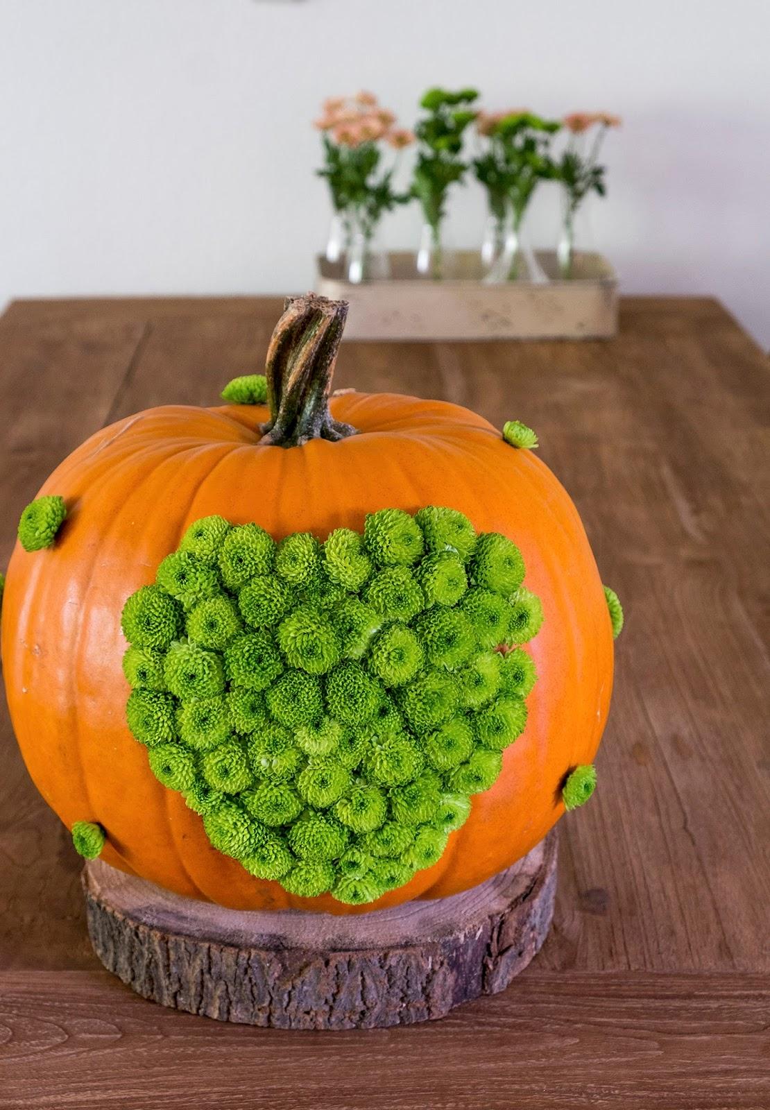 DIY orange pumpkin dotted with green mums