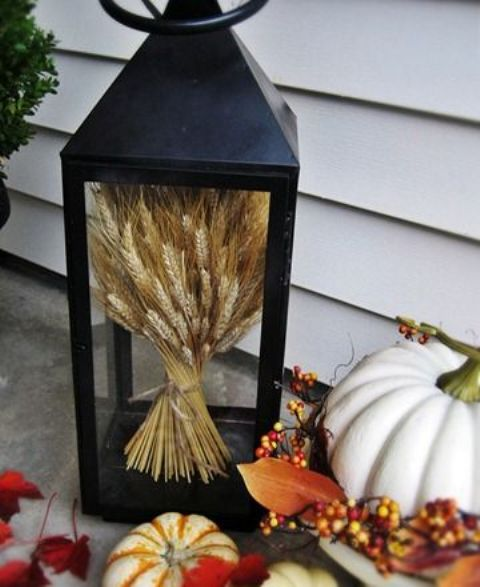 a lantern with wheat on display and little pumpkins around for a chic and timeless fall look