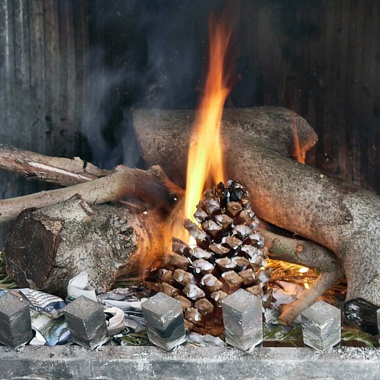 DIY pinecone firestarters with rosemary (via www.popsugar.com)