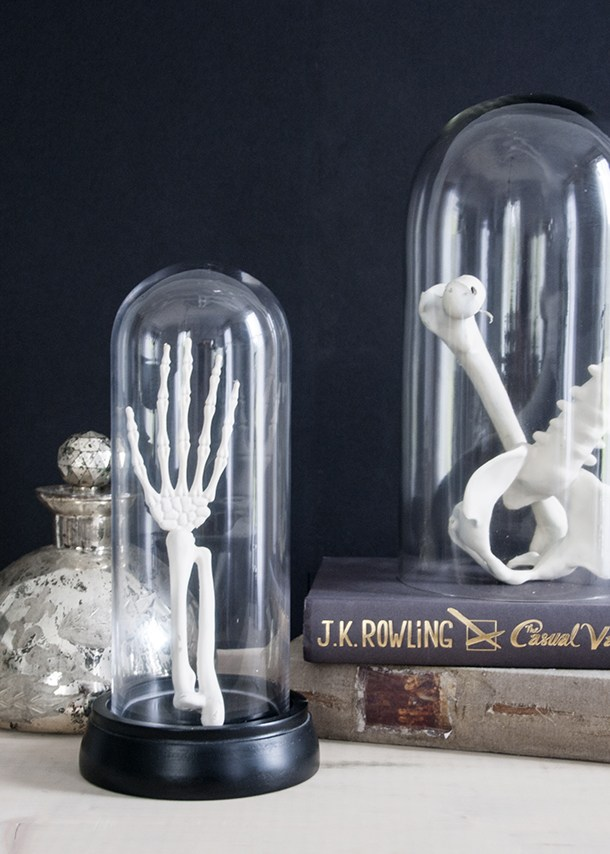 DIY skeleton parts in cloches display (via www.earnesthomeco.com)