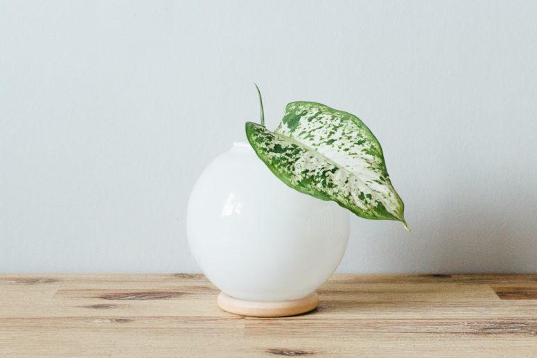 DIY modern vase of a glass sphere and a wooden ring (via matildigt.se)
