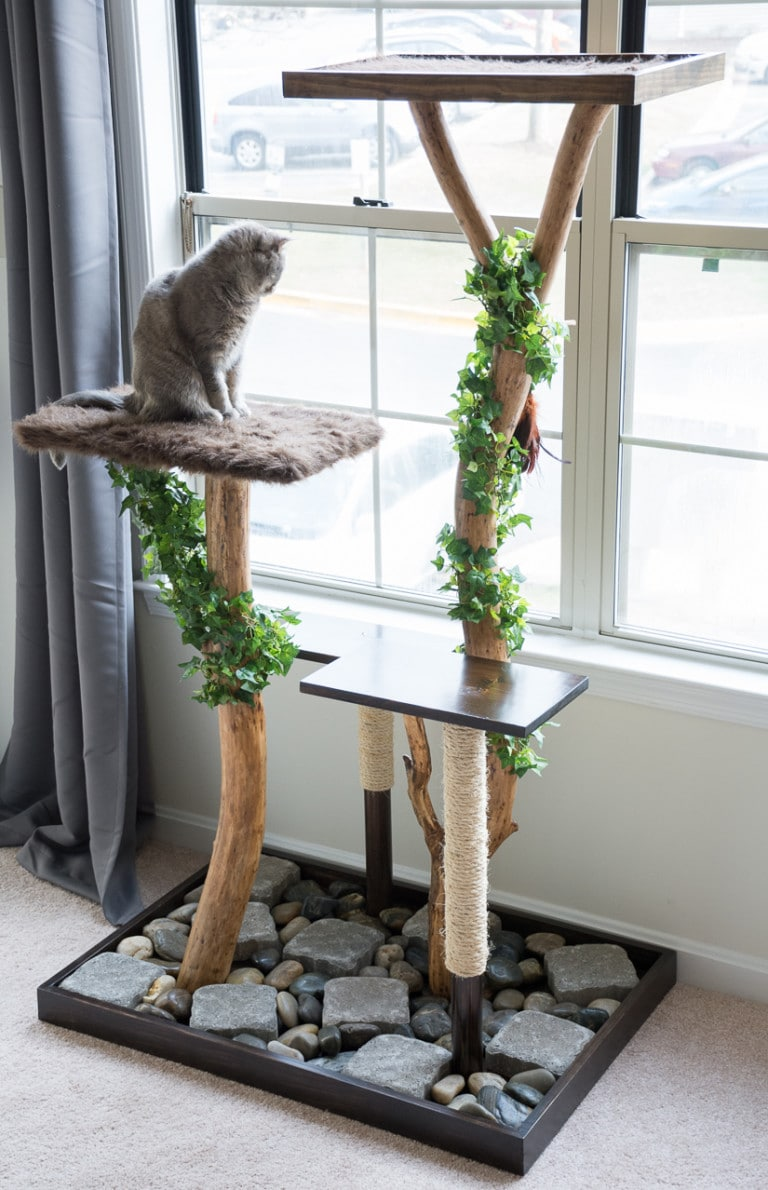 DIY realistic cat tree with branches and rocks downside (via www.bybrittanygoldwyn.com)
