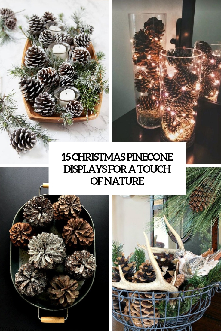 christmas pinecone displays for a touhc of nature cover