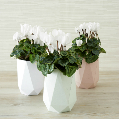 DIY pastel faceted vases for spring home decor (via www.allthingspaper.net)