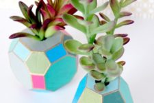 DIY multi-faceted and colorful succulent vases