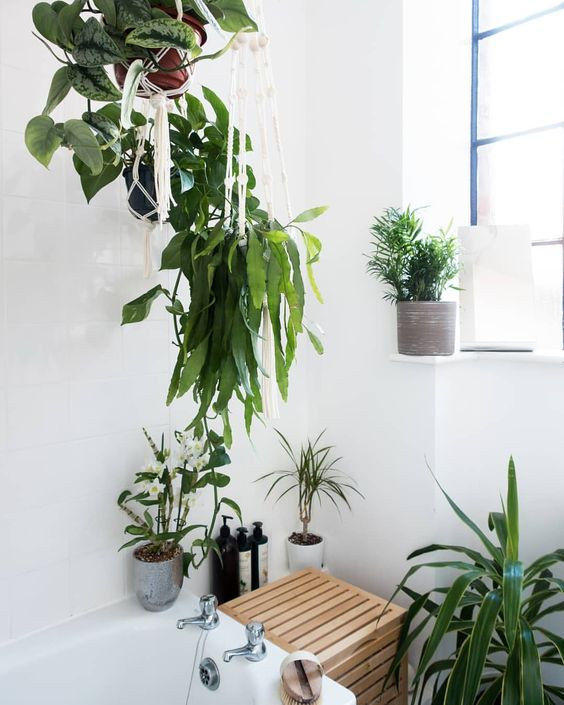 hang some potted greenery over the bathtub and place some on the corners of the tub to create an oasis