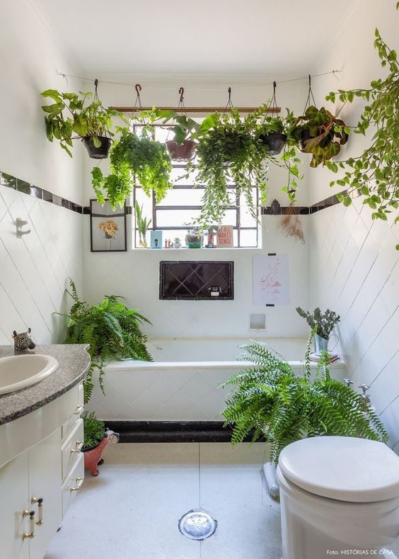 potted greenery hanging over the bathtub and some plants around the tub for a fresh feel