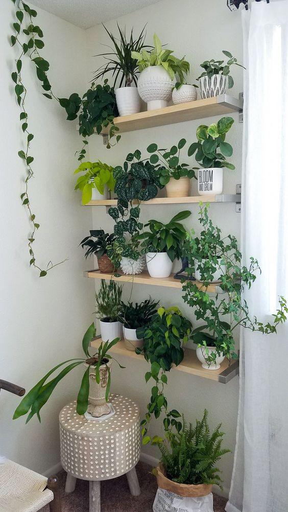 some floating shelves and potted greenery on them is a cool idea for any space