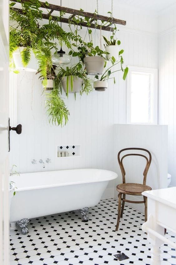 a vintage ladder with potted greenery and lamps hanging down refreshes the bathroom at once