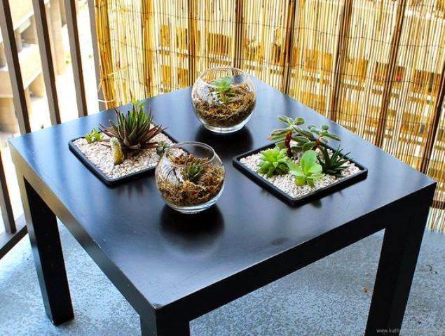a sunken succulent Lack table is a gorgeous hack to create an indoor garden easily