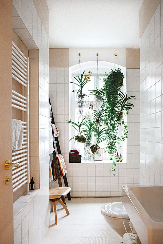 potted greenery hanging over the windowsill is a very refreshing touch and you won't lose any floor space