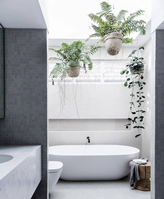 a minimalist bathroom with potted greenery over the bathtub is a trendy idea to refresh the laconic look