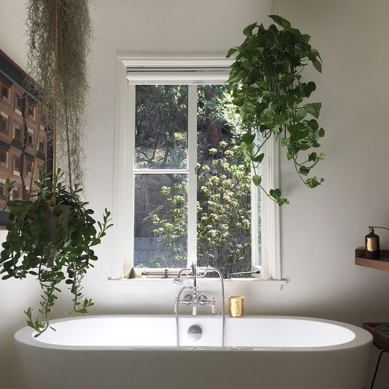a couple of potted greenery planters hanging over the tub is a cool idea for every style