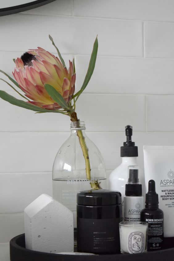a single king protea in a clear vase is a bold and stylish statement for a contemporary space