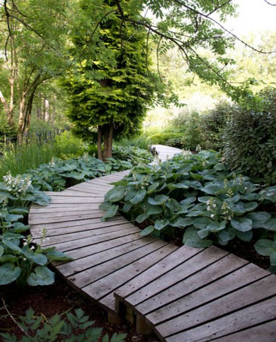 a beautiful wooden path going down and surrounded with greenery completely for a fresh look