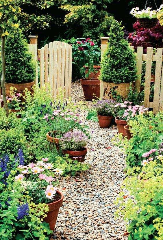 a small cottage garden with a gravel path, terra cotta pots and a basic picket fence painted yellow
