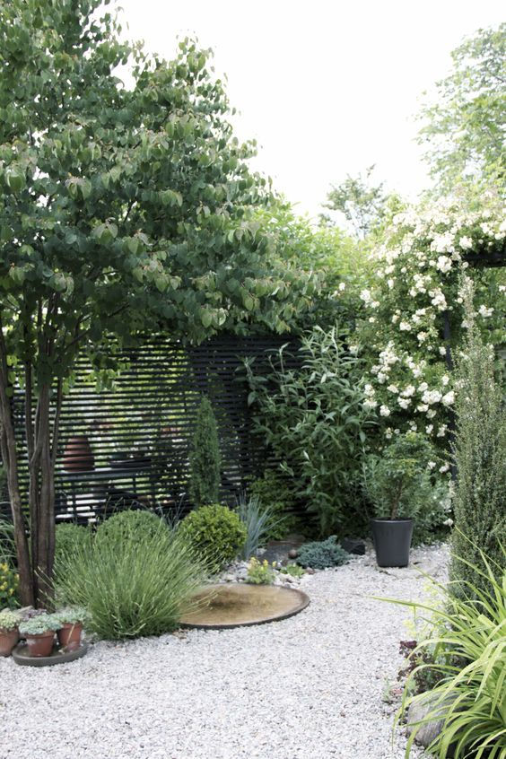 light-colored gravel and potted greenery and trees make up a cool Scandinavian-insppired space