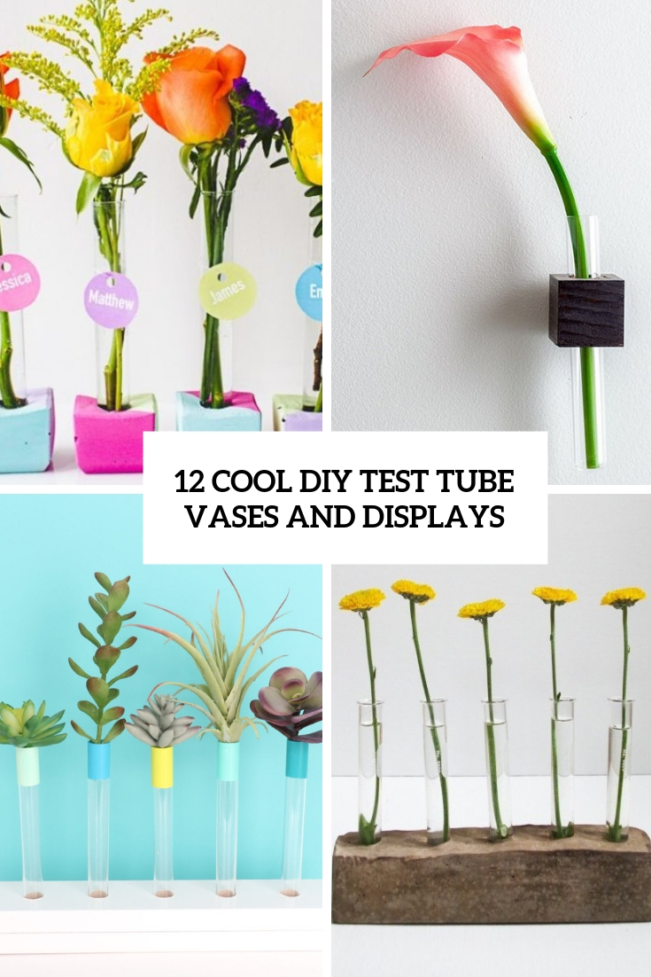 cool diy test tube vases and displays cover