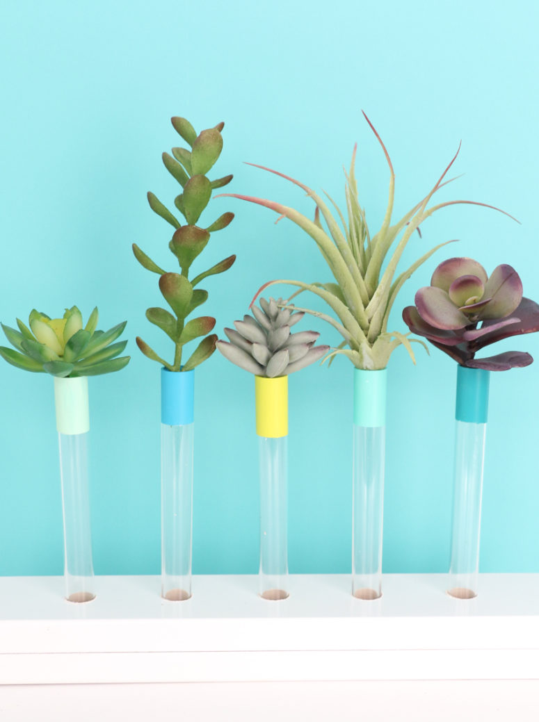 DIY color accented test tube bud vases in a wooden holder (via akailochiclife.com)