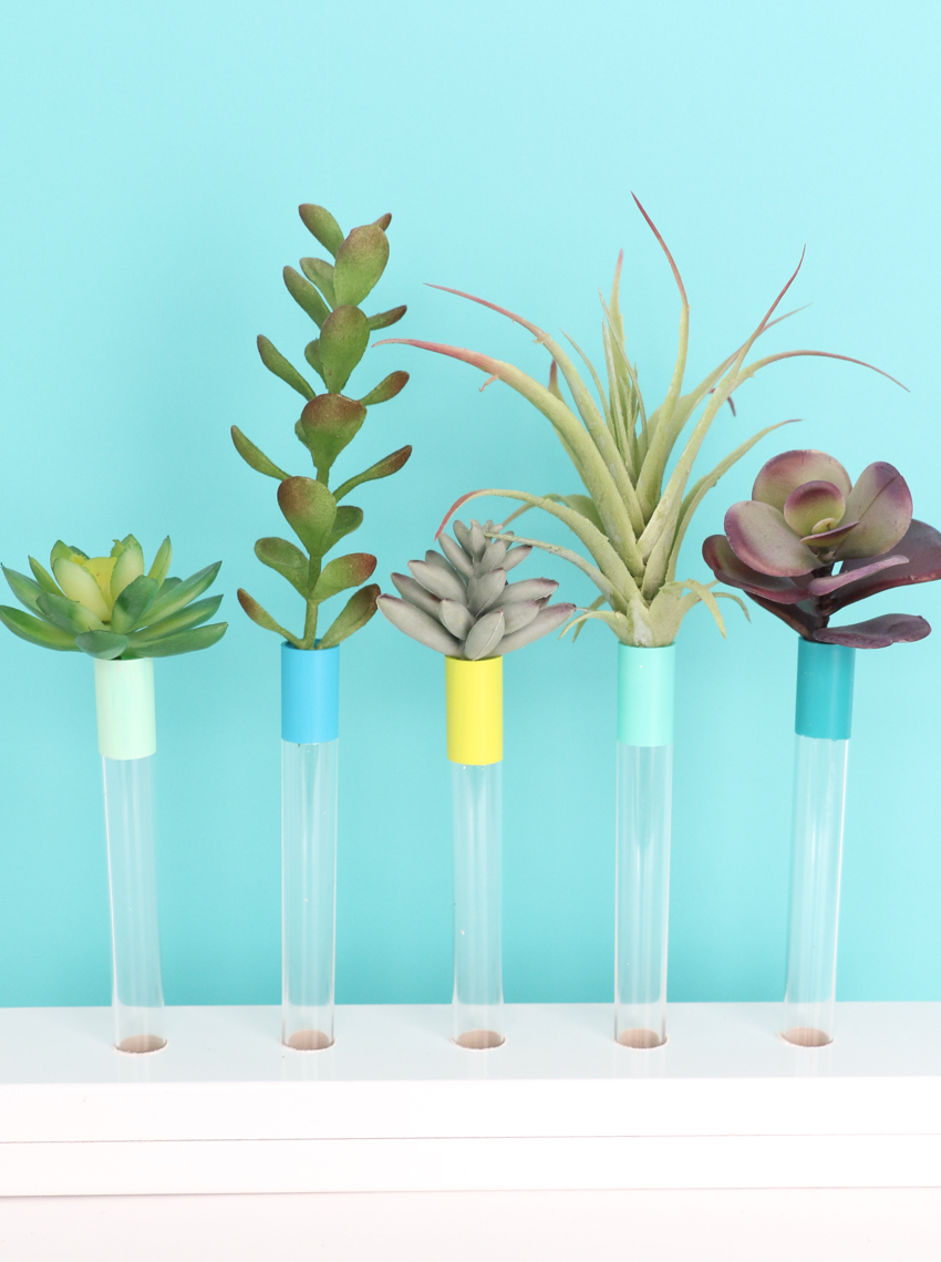 DIY color accented test tube bud vases in a wooden holder