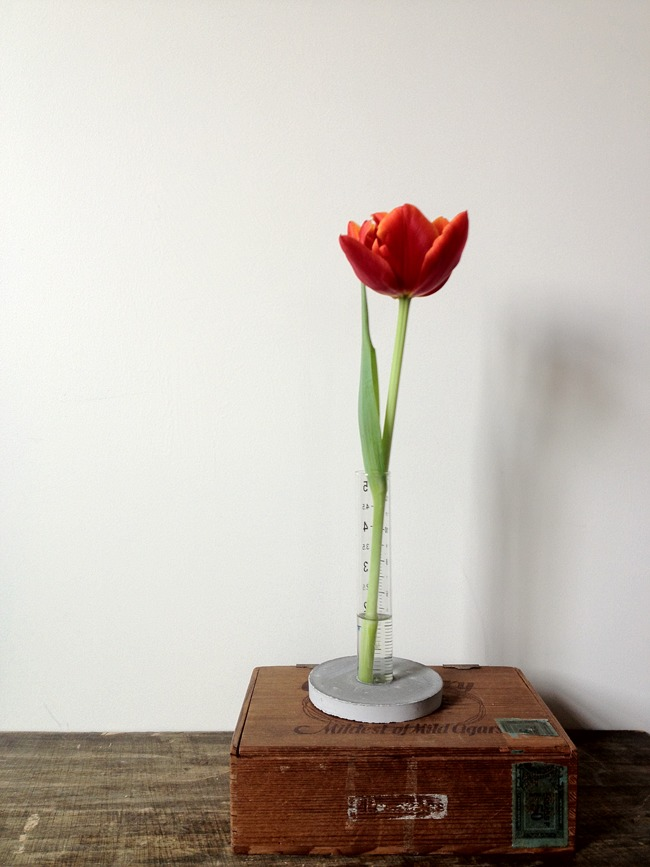 DIY concrete and test tube vase (via www.adailysomething.com)