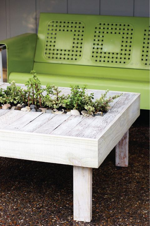 a whitewashed pallet coffee table with a planter in the center, it features greenery and pebbles and looks natural